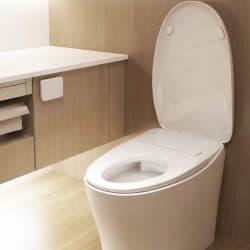 Smart Toilet Zero