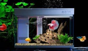 acuario inteligente xiaomi