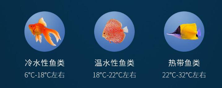 peces xiaomi