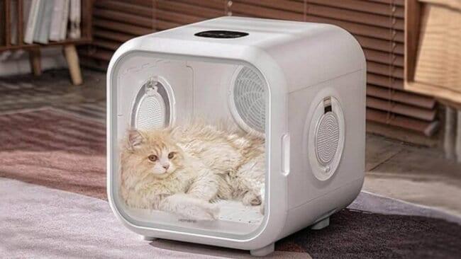 secador de mascotas xiaomi