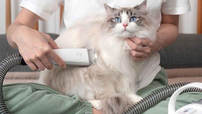 xiaomi youpin maquinilla de afeitar eléctrica mascotas perros gatos